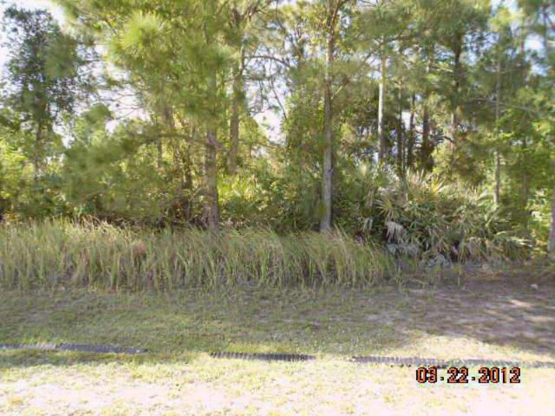 Buy Here : Port St.lucie : Saint Lucie County : Florida