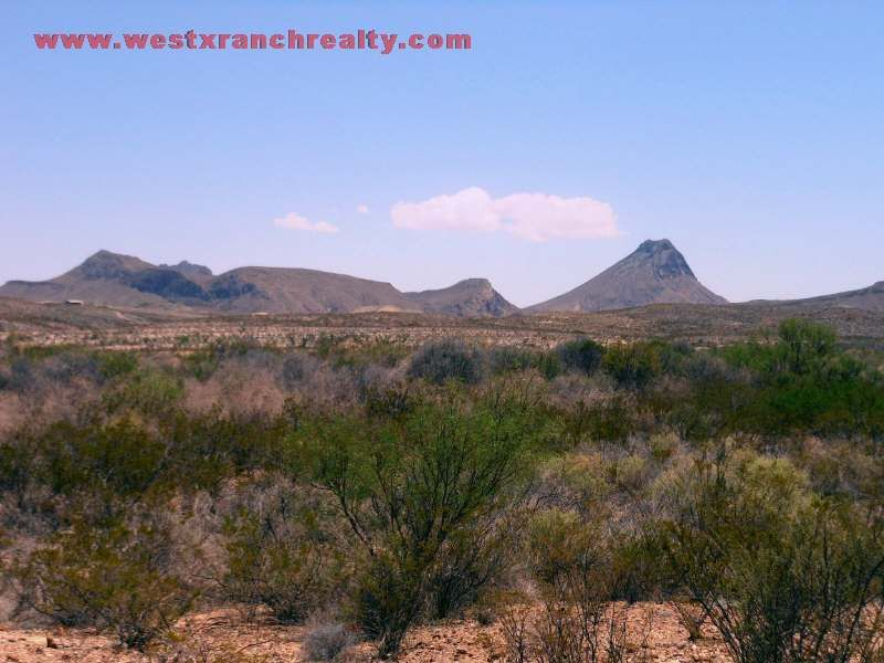 Tract 8367 20 Acres In West Tx : Terlingua : Brewster County : Texas