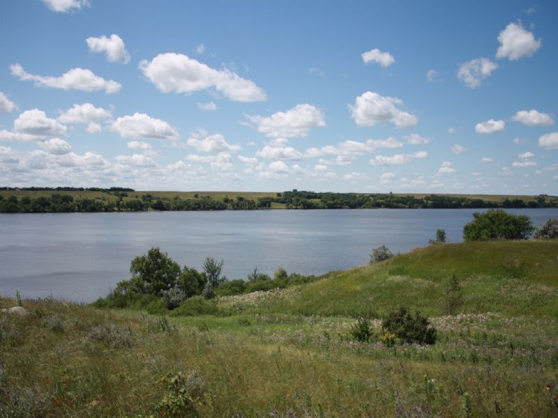 97 Acres On Big Stone Lake : Browns Valley : Traverse County : Minnesota