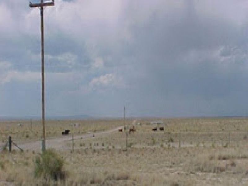 Rio Grande Estates 0.50 Acre Lot : Belen : Valencia County : New Mexico
