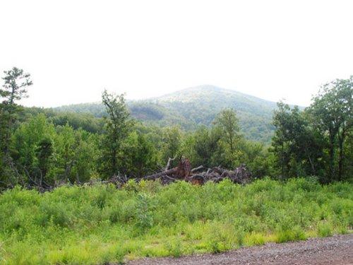 4700+/- Acres Of Recreational An : Hartford : Sebastian County : Arkansas