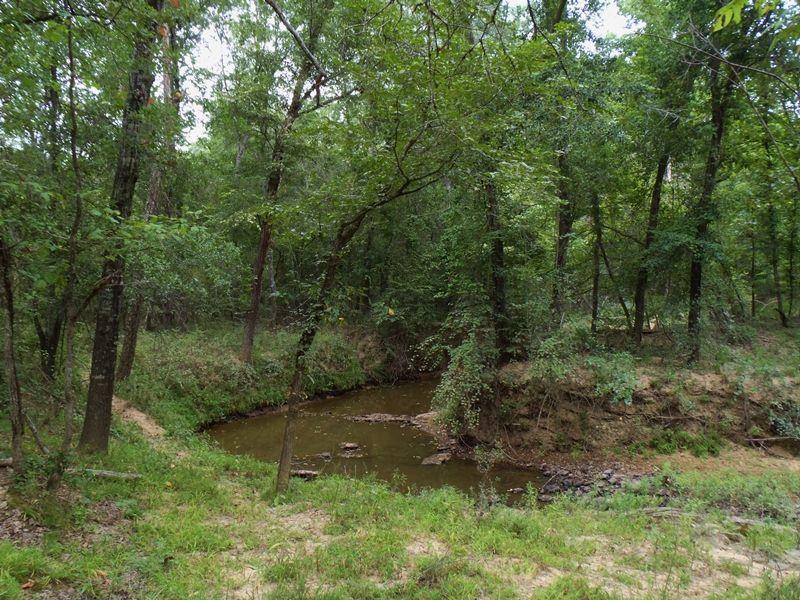 10 Mile Creek 80 : Antlers : Pushmataha County : Oklahoma