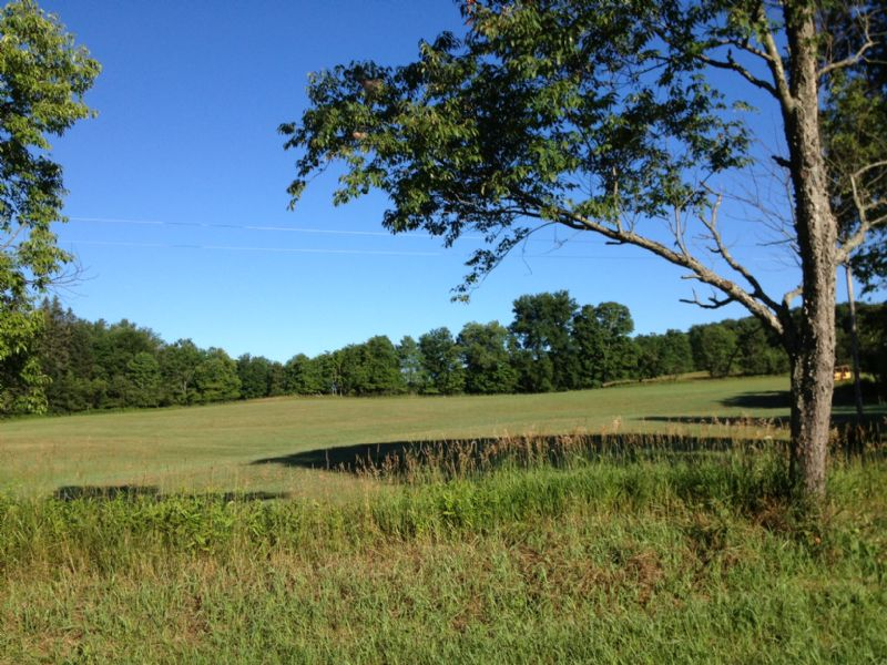 Clover Meadows & Apple Groves : Camden : Oneida County : New York