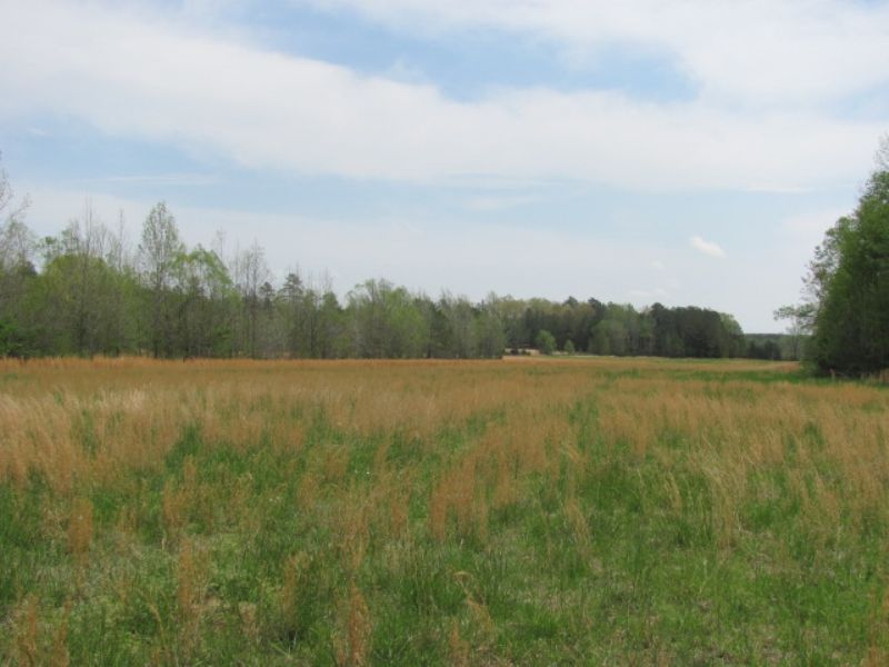 77.72 Acres  Hunting And Farming : Bethel Springs Tn : McNairy County : Tennessee