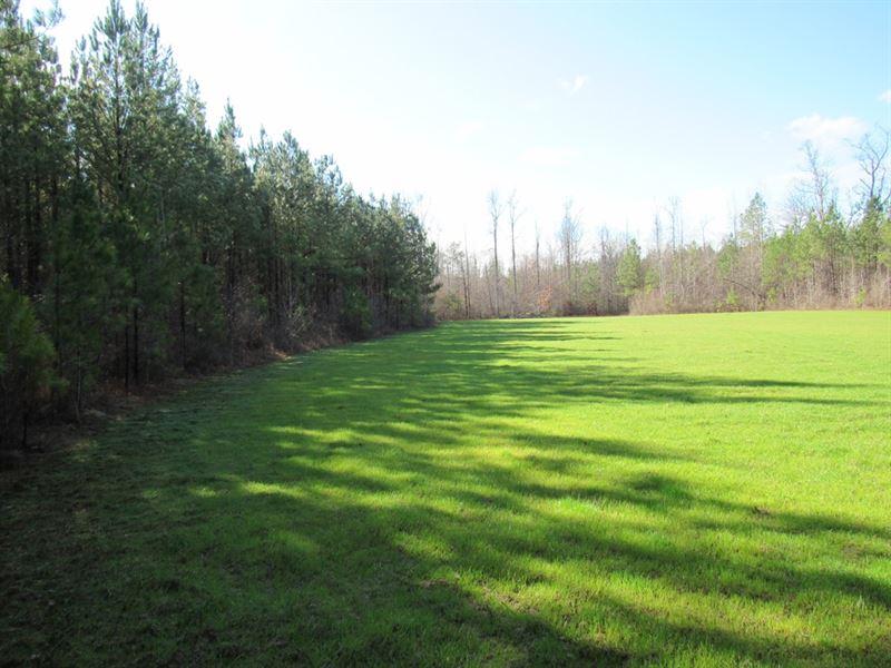 59-008B Wattsville B : Ragland : Saint Clair County : Alabama