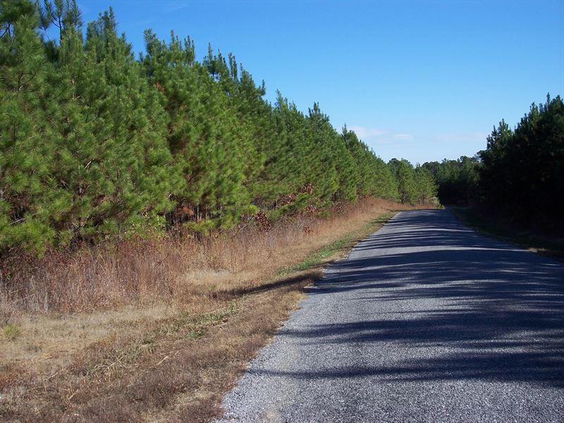 59-007C River Branch C : Ragland : Saint Clair County : Alabama