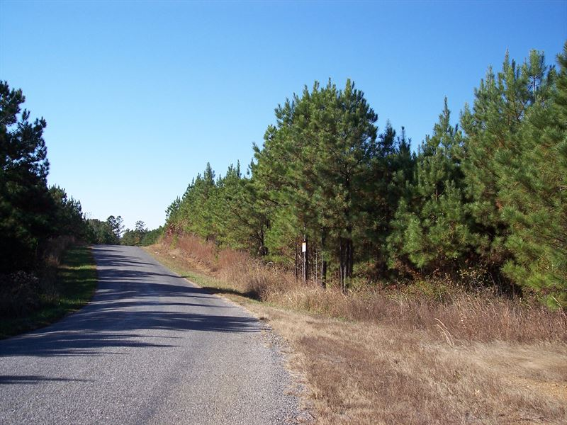 59-007B River Branch B : Ragland : Saint Clair County : Alabama