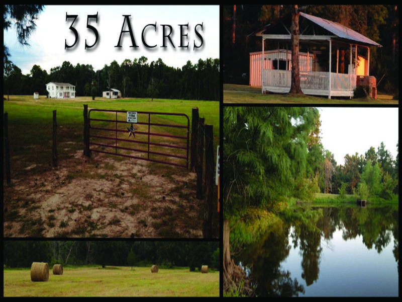 35 Acres- Dickey Loop : Bedias : Walker County : Texas