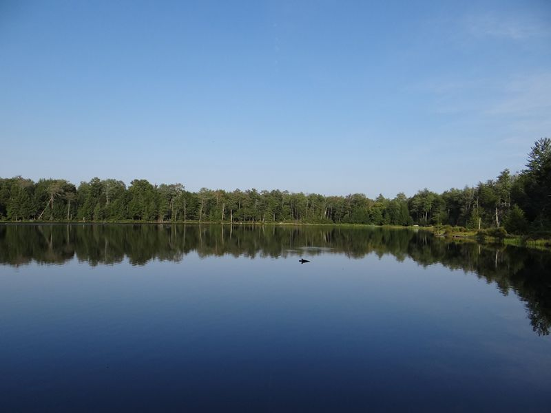 Pond Frontage - Private - 6 Acres : Mcdonough : Chenango County : New York