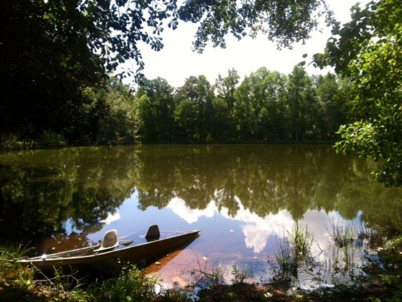 3 Acre Pond- Sw Ga Hunting Tract : Americus : Sumter County : Georgia