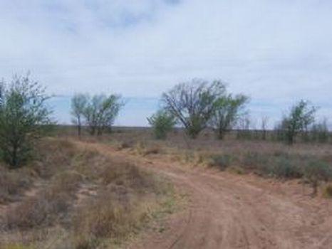 5 Acres : Bledsoe : Cochran County : Texas