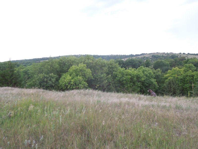 Ranch : Sargent : Custer County : Nebraska