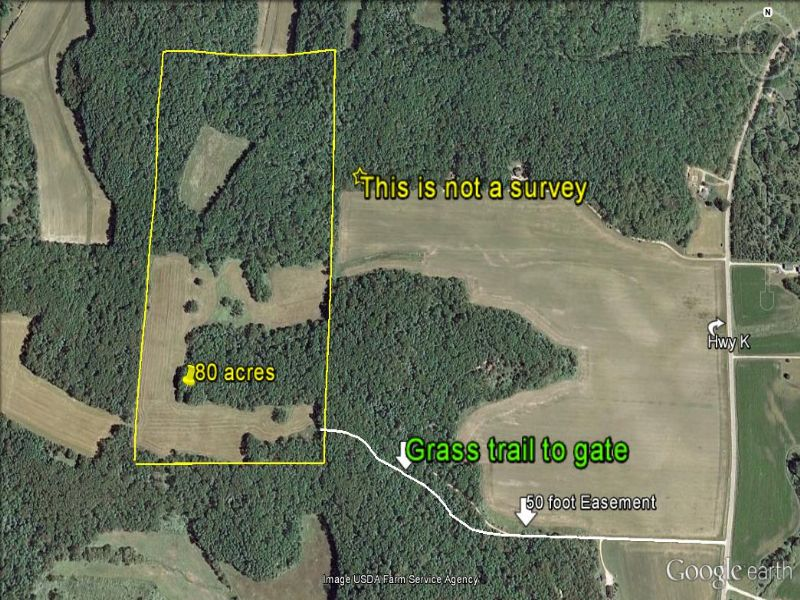 80 Acres - Views, Cropland & Woods : Black Earth : Iowa County : Wisconsin