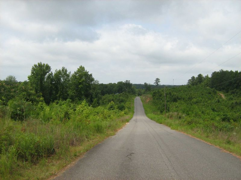 Commercial Or Residential Property : Cottondale : Tuscaloosa County : Alabama