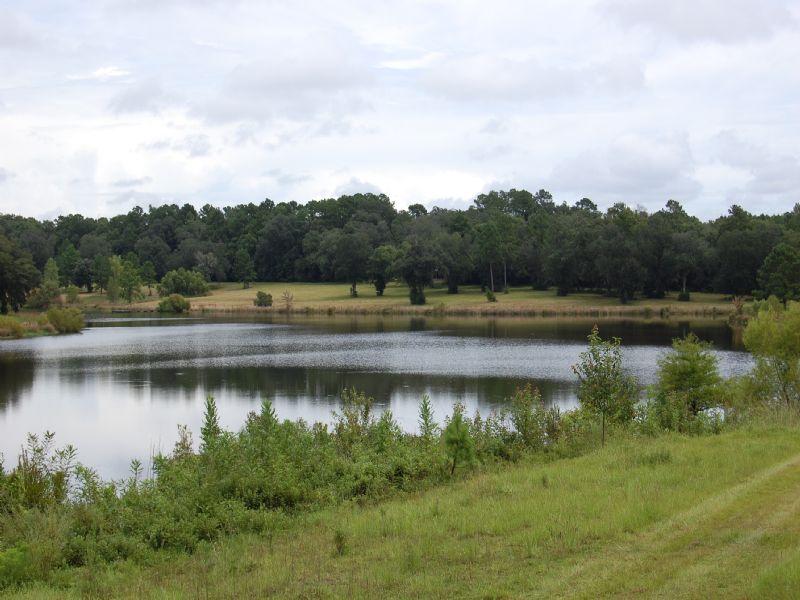 Saranac Lake And Lodge : Havana : Gadsden County : Florida