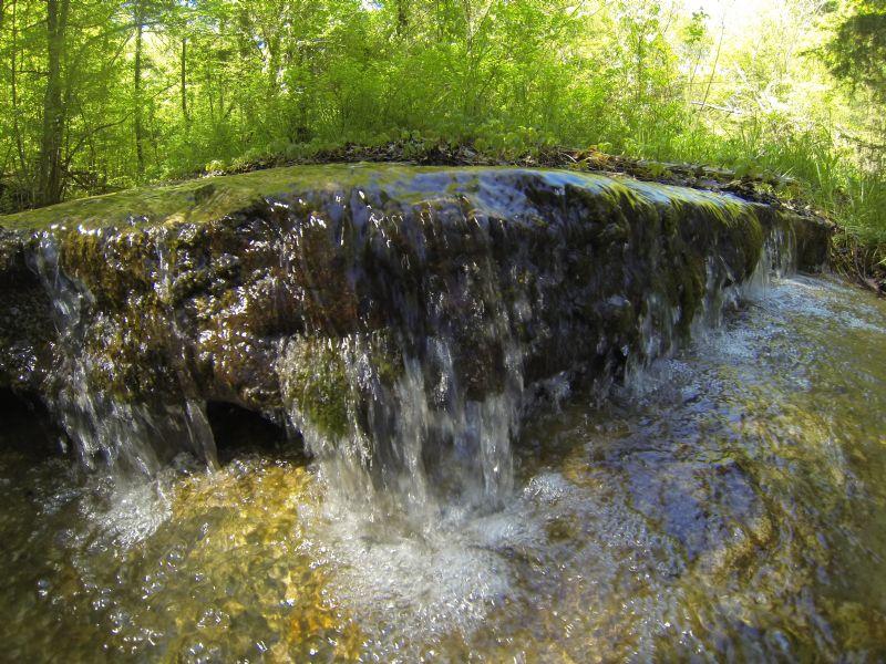 18.44 Acres Near Tn River : Bath Springs : Henderson County : Tennessee