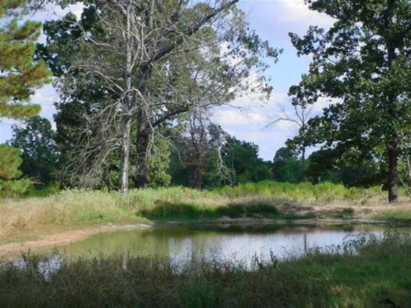 42+ Acres (#27384) : Detroit : Red River County : Texas