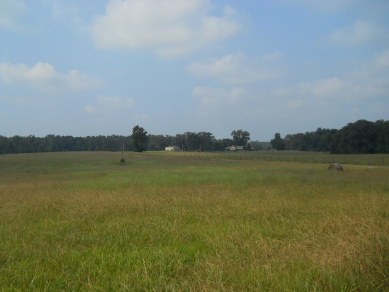 113.89 Ac On Rocky Mount Rd. : Gay : Meriwether County : Georgia