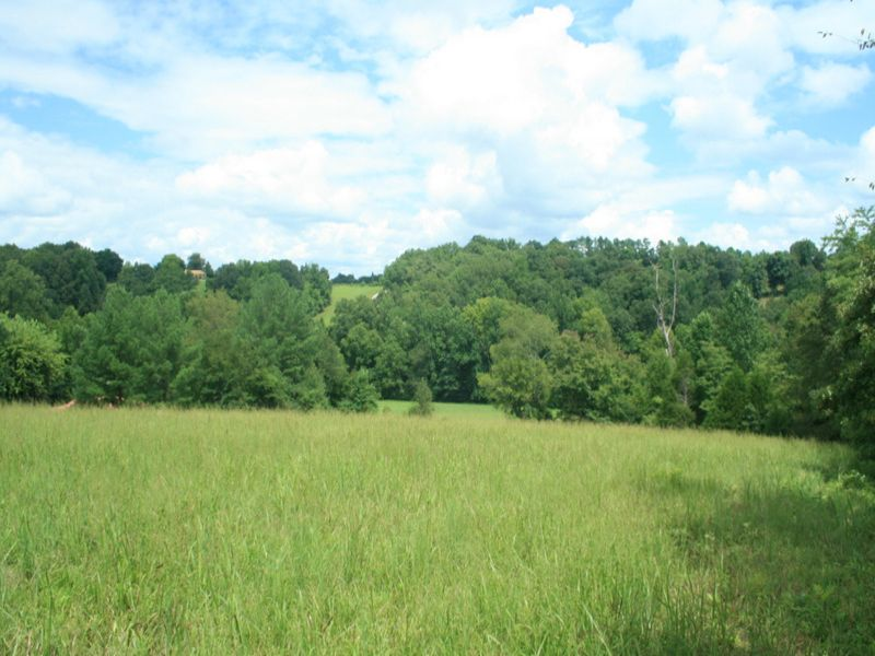 23 Acres Near Natchez Trace Pwy : Primm Springs : Maury County : Tennessee