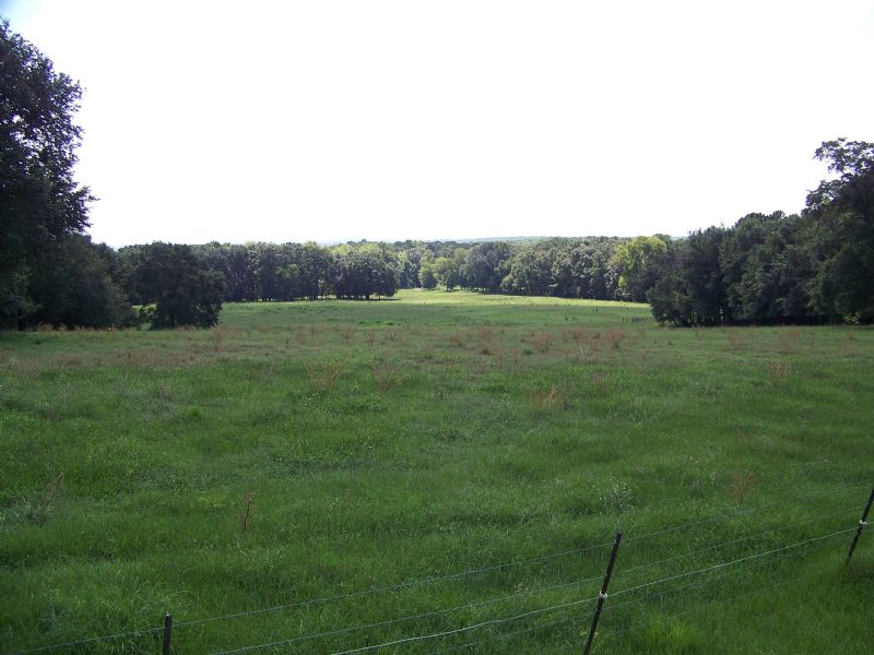 Tremendous Investment Tract : Sneads : Jackson County : Florida