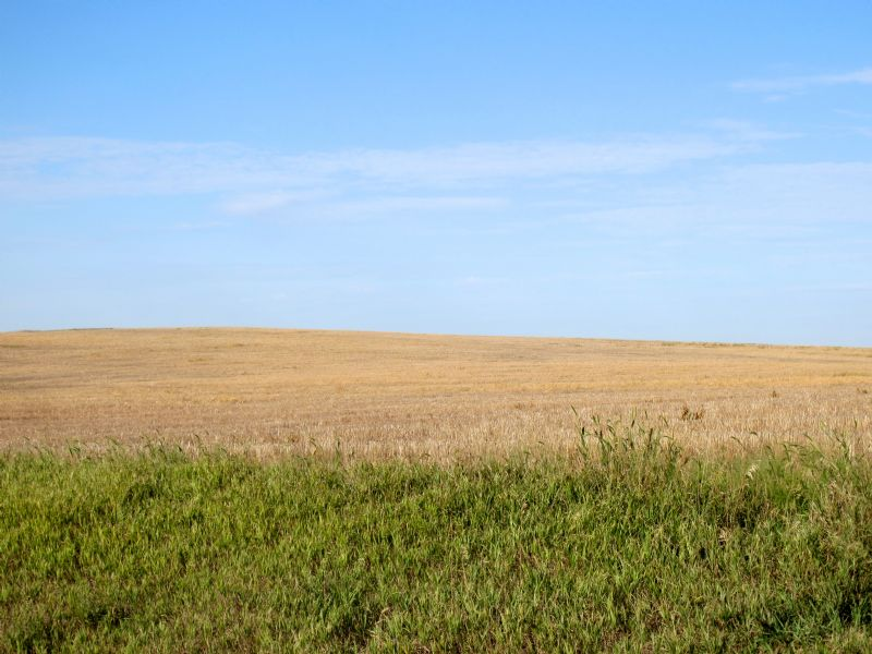 Land Auction : Murdo : Jones County : South Dakota
