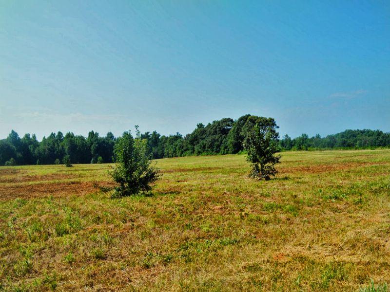 13.35 Acres On Highway 11 : Chesnee : Cherokee County : South Carolina