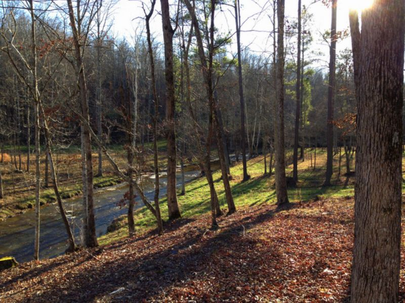 38 Acres On Younger Creek : Primm Springs : Williamson County : Tennessee