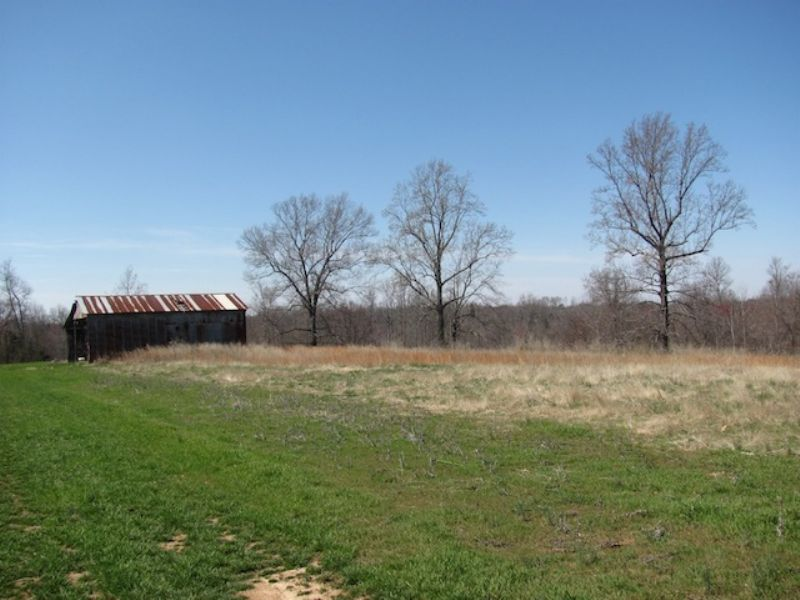 80 Acres In Huntingdon : Huntingdon : Carroll County : Tennessee