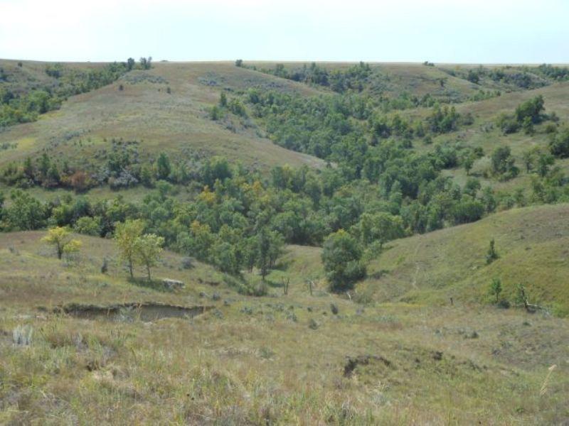 South Dakota Range Land : Prairie City : Perkins County : South Dakota