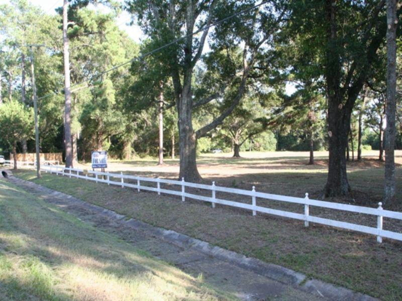 Lem Turner 53 Acres : Callahan : Nassau County : Florida