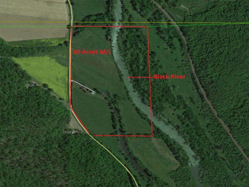 60 Acres With Duplex & Cabin : Piedmont : Wayne County : Missouri
