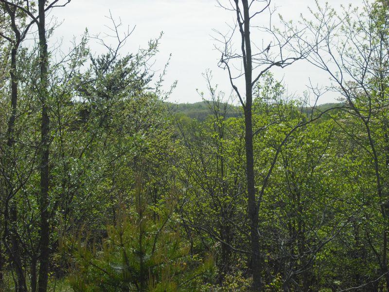 Antler Ridge : Logan : Hocking County : Ohio