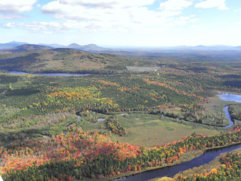 Felker Pond Forest : King And Bartlett Township : Somerset County : Maine