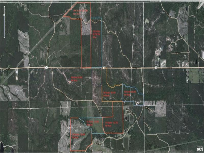 184 Acres : Hattiesburg : Lamar County : Mississippi