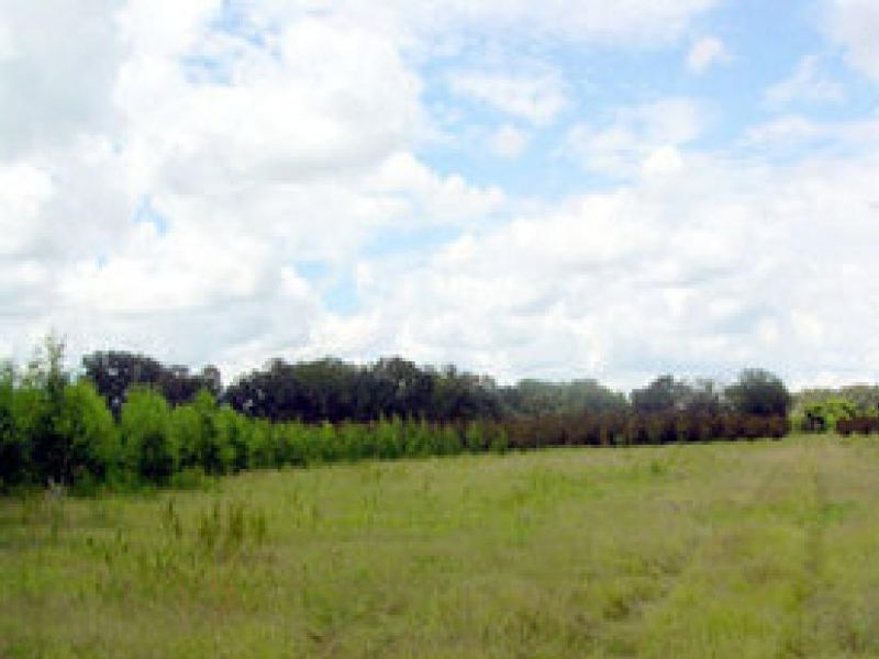 Vacant Land For Sale : Froostproof : Polk County : Florida