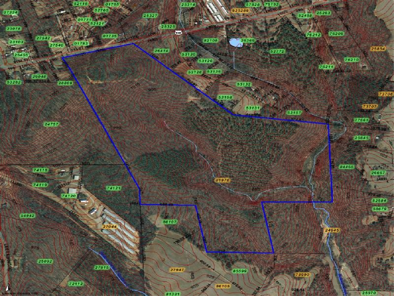 123 Ac Timber, Develop Land Sale : Maiden : Lincoln County : North Carolina