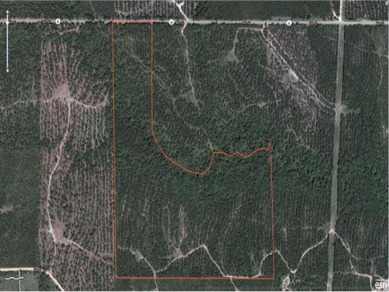 96 Acres : Hattiesburg : Lamar County : Mississippi