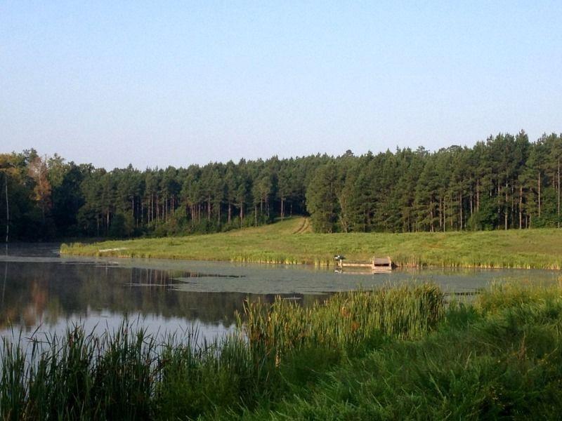 Four Corners Hunting Retreat : Blackstock : Chester County : South Carolina