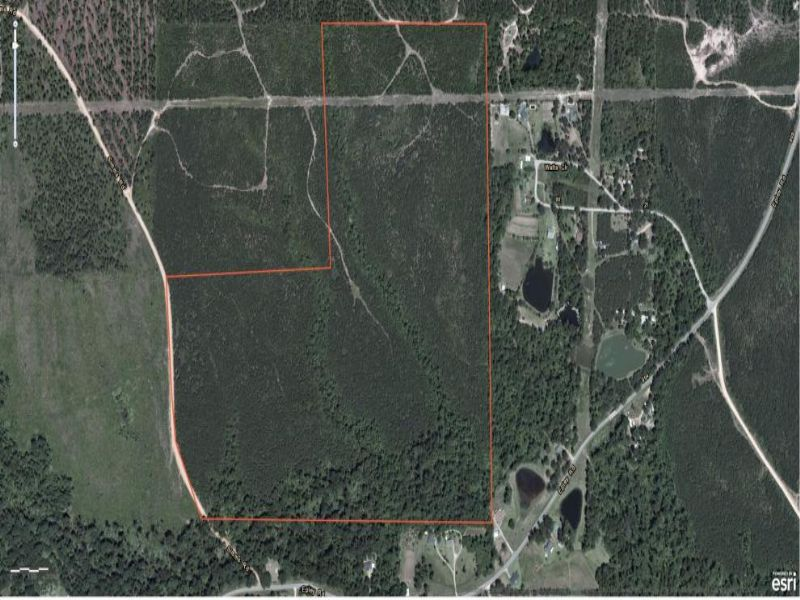 112 Acres : Hattiesburg : Lamar County : Mississippi