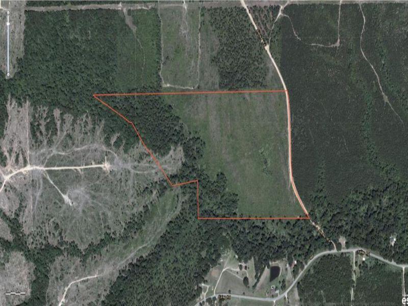 62 Acres : Hattiesburg : Lamar County : Mississippi