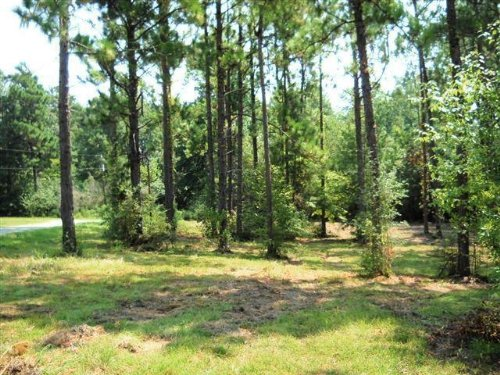 85 Acres : Lumberton : Lamar County : Mississippi