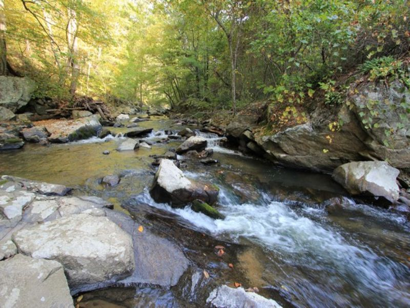 Private Trout Stream Frontage Near : Independence : Grayson County : Virginia