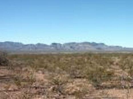 12.5 Acres : Sierra Blanca : Hudspeth County : Texas