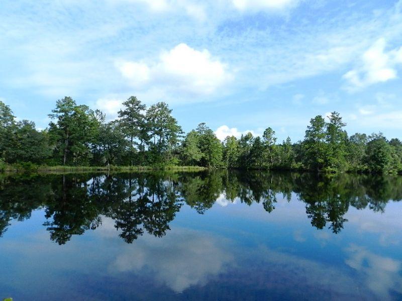 Bulloch Beauty - 7+acre Pond : Statesboro : Bulloch County : Georgia