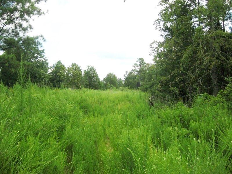 Broad River Recreational Land : Carlisle : Union County : South Carolina