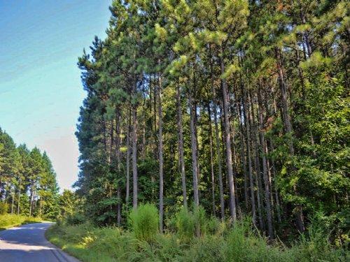 9.6 Acres Near Croft State Park : Spartanburg : South Carolina