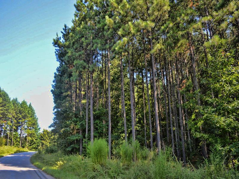 9.6 Acres Near Croft State Park : Spartanburg : Spartanburg County : South Carolina