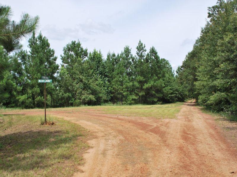 Wilson Landing Lot 6 : Baxley : Appling County : Georgia