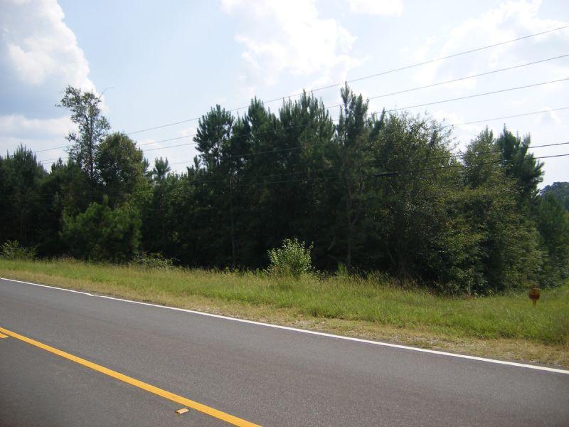 +/- 28ac Pickering Road - Okatoma : Collins : Covington County : Mississippi