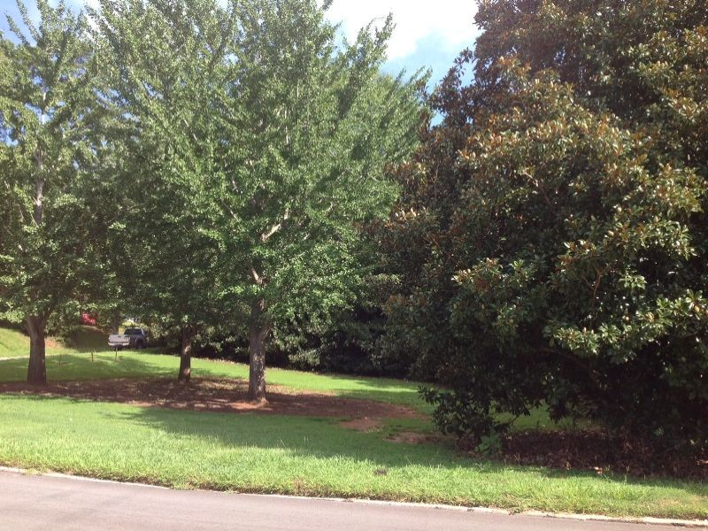 Affordable Homesite : Lagrange : Troup County : Georgia